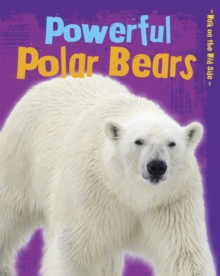 Powerful Polar Bears, Paperback Book