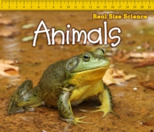 Animals, Paperback Book