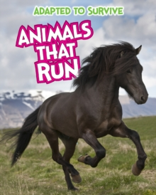Adapted to Survive: Animals that Run, Paperback Book