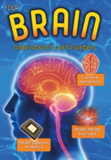 Your Brain : Understand it with Numbers, Paperback Book