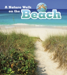 A Nature Walk on the Beach, Hardback Book