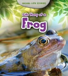 Life Story of a Frog, Paperback Book