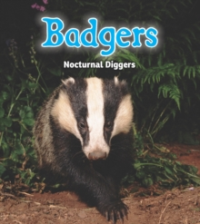 Badgers : Nocturnal Diggers, Hardback Book