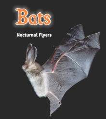 Bats : Nocturnal Flyers, Paperback Book