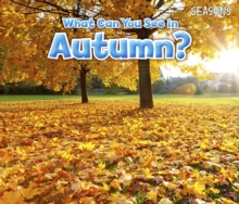 What Can You See in Autumn?, Hardback Book