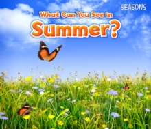 What Can You See in Summer?, Hardback Book