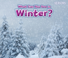 What Can You See in Winter?, Paperback Book