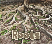 All About Roots, Hardback Book