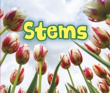 All About Stems, Paperback Book