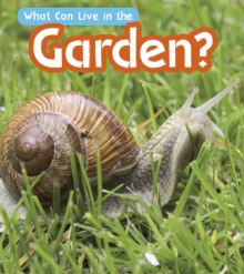What Can Live in a Garden?, Paperback Book