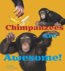 Chimpanzees are Awesome!, Paperback Book