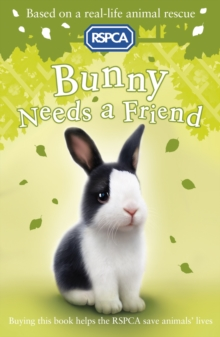 Bunny Needs a Friend, Paperback Book