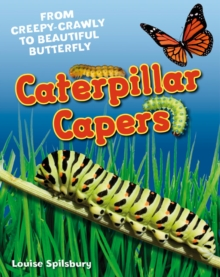 Caterpillar Capers : Age 5-6, Above Average Readers, Paperback Book