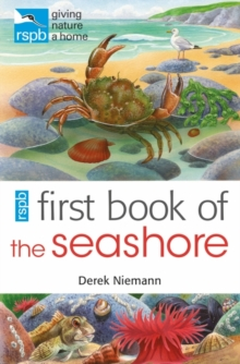 RSPB First Book of the Seashore, Paperback Book