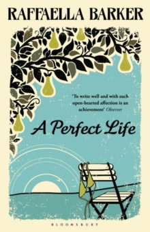 A Perfect Life, Paperback Book