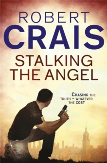 Stalking The Angel, Paperback Book