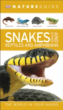 Nature Guide Snakes and Other Reptiles and Amphibians, Paperback Book