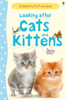 Looking After Cats and Kittens, Hardback Book