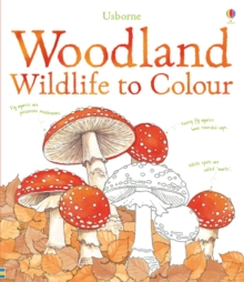 Woodland Wildlife to Colour, Paperback Book