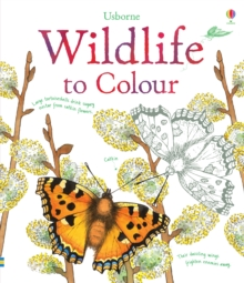 Wildlife to Colour, Paperback Book