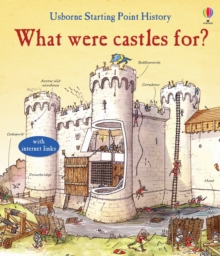 What Were Castles for?, Hardback Book