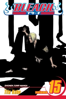 Bleach, Vol. 15, Paperback Book