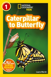 Catepillar to Butterfly, Paperback Book