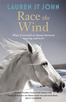 Race the Wind : Book 2, Hardback Book