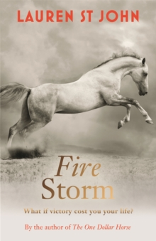 Fire Storm : Book 3, Paperback Book