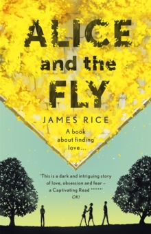 Alice and the Fly, Paperback Book