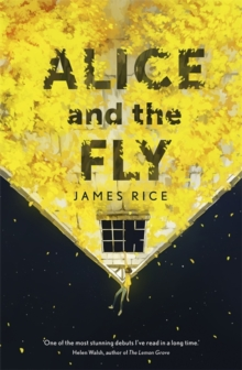 Alice and the Fly, Hardback Book