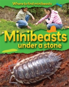 Minibeasts Under a Stone, Paperback Book