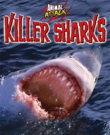 Killer Sharks, Hardback Book