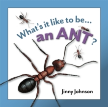 An Ant, Hardback Book