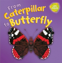From Caterpillar to Butterfly, Paperback Book