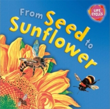 From Seed to Sunflower, Paperback Book