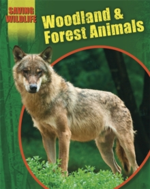 Woodland and Forest Animals, Paperback Book
