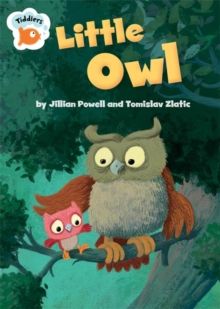 Little Owl, Paperback Book