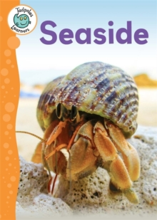 Seaside, Hardback Book
