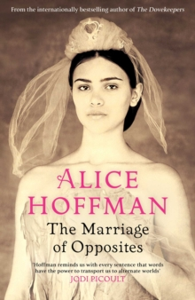 The Marriage of Opposites, Hardback Book