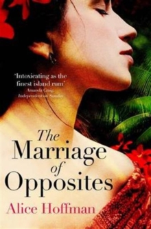 The Marriage of Opposites, Paperback Book