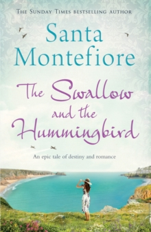 Swallow and the Hummingbird, Paperback Book
