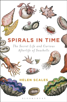 Spirals in Time : The Secret Life and Curious Afterlife of Seashells, Paperback Book