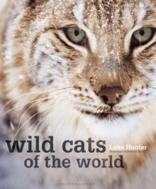 Wild Cats of the World, Hardback Book