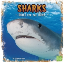 Sharks : Built for the Hunt, Hardback Book