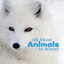 All About Animals in Winter, Hardback Book