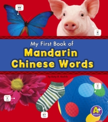 Mandarin Chinese Words, Hardback Book