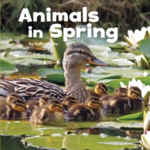 Animals in Spring, Hardback Book