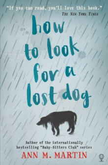 How to Look for a Lost Dog, Paperback Book