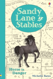 Sandy Lane Stables: Horse in Danger, Hardback Book